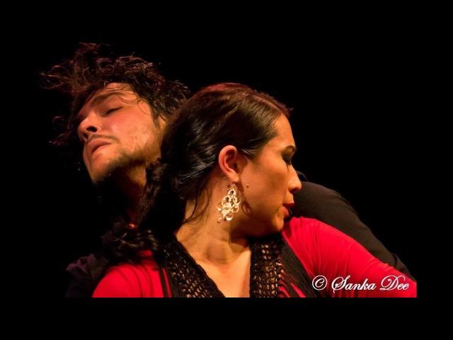 Farruca, Ivan Vargas Kasandra La China, flamenco dancers