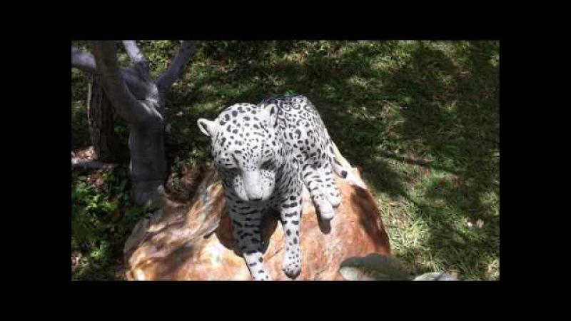 Escultura em concreto de onça pintada – Jaguar concrete statue
