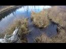 Охота на бобра капканами начинающий beaver hunting traps
