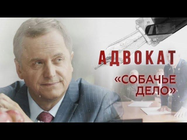 Адвокат 9 сезон 35 серия - Собачье дело (2017) HD 1080p