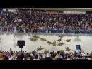 Desfile Império Da Tijuca 2018