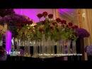 Les fleurs ne connaissent pas la crise Intégrale Visites privées