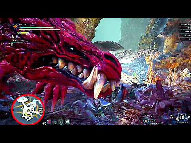 Monster Hunter World - Rotten Vale Coral Highlands Gameplay 『モンスターハンター:ワールド』