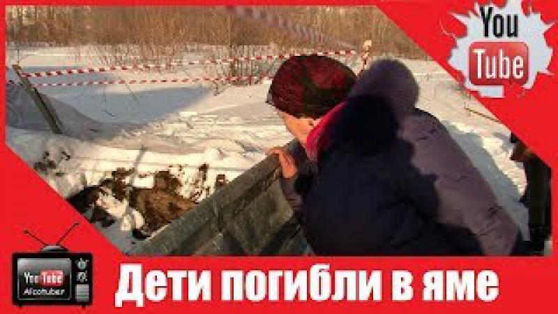 В поселке под Новосибирском погибли дети, провалившись в яму с водой