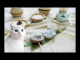 Cat's Kitchen Official Channel # 14 ENG SUB