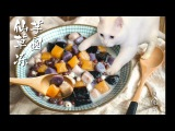 Cat's Kitchen Official Channel #11 ENG SUB
