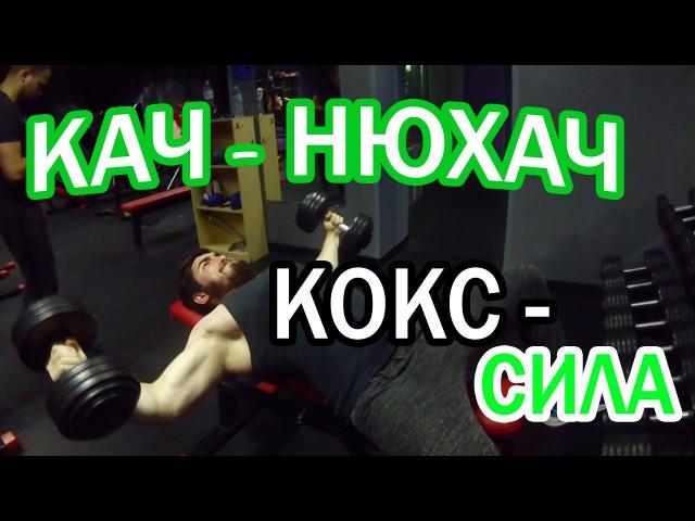Кач - Нюхач : КОКС - сила!