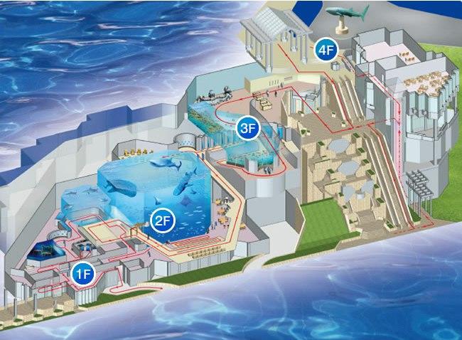 Океанариум Тюрауми веб камера онлайн, Окинава. Япония