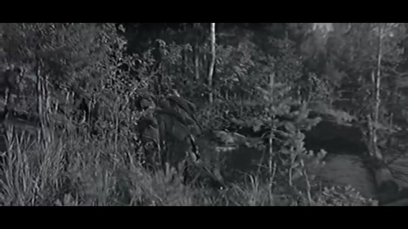 А зори здесь тихие (1972 год)
