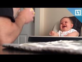 Этот детский смех заставит вас улыбнуться