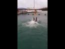 Дельфинчики Экскурсия на Кайо Бланко Ноябрь 2017