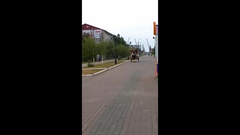 на Арбате дети катались на лошади в карете