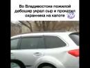 Во Владивостоке пожилой дебошир украл сыр и прокатил охранника на капоте