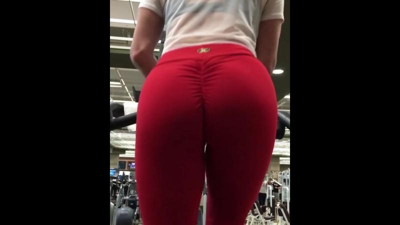 Kendra Lust Кендра Ласт качает попу милф milf sex sport ass жопа фитоняшка спортивное тело