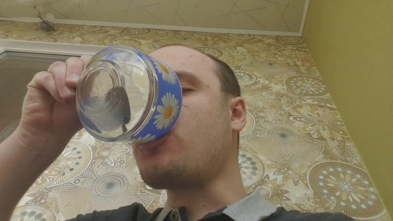 Пью концентрированную лимонную кислоту 2 супницы