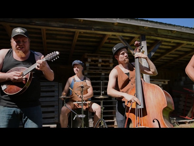 YOU COULD BE MINE by STEVE ´N´ SEAGULLS LIVE