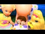 У Барби родились щенята. Катя и Макс в бассейне. Мультик про кукол