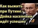 Путин : Дойка идёт успешно, темп отличный. Всё будет хорошо