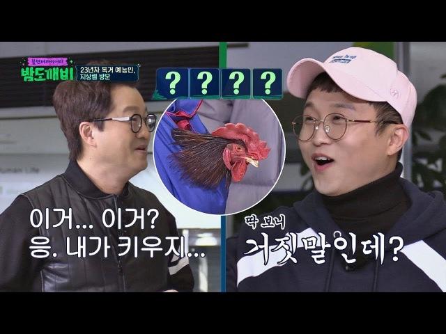 (당황) 살아있는 닭 들고 등장한 독거 예능인 지상렬(ㅋㅋ) 밤도깨비 24회