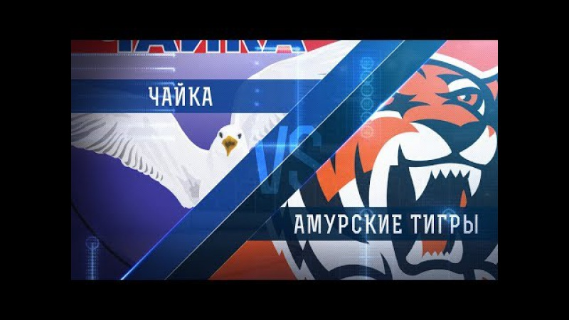 Прямая трансляция матча. «Чайка» - «Амурские Тигры». (16.1.2018)