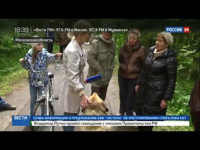 Новости на «Россия 24» • Зеленая карта: ОНФ проводит рейд по Подмосковью