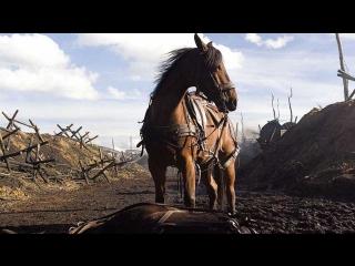 Боевой конь (war horse, 2011) hd
