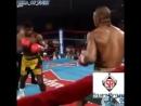 лучшие нокауты в боксе