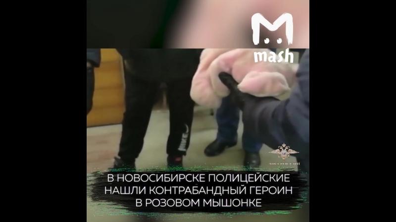 В Новосибирске полицейские нашли контрабандный героин в игрушке