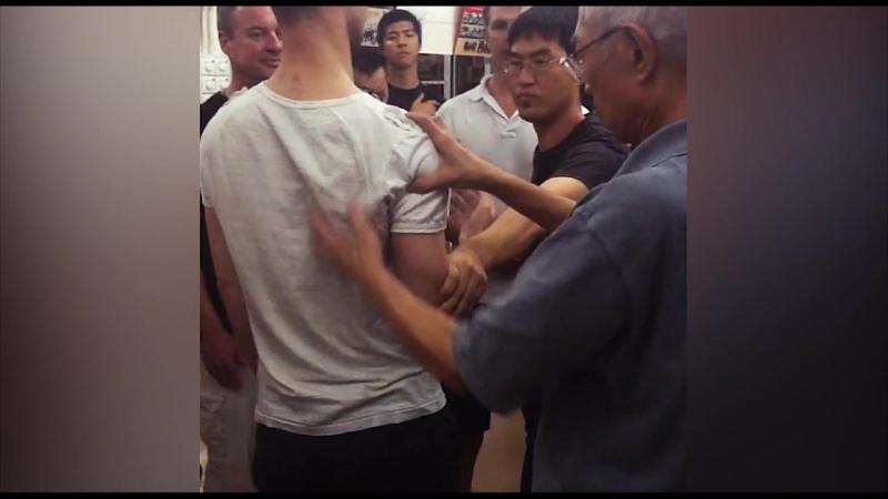 Chu Shong Tin powering up my Tan Sau