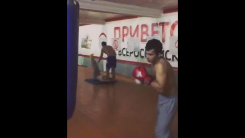 академия бокса чебоксары