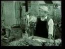 Каннские львы. Лучшее. 1961 - Schweppes - Gardening Advice TV