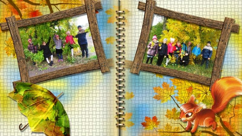 Диво - осінь золота