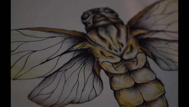 Belladonna mortis ART