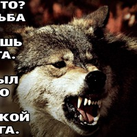 Анкета Artyom Bogdan