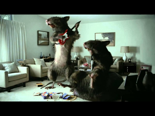 Orkin Commercial Vacation