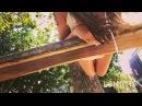 Zaya bali video