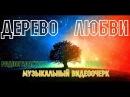 Дерево Любви музыкальный видеоочерк канала Радиогалактика Лебедь