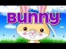 BUNNY | BINGO | Springtime Song for Kids | Jack Hartmann