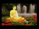 Saggio Maestro Video 2011 (Tumi Bhaja Re Mana - Manish Vyas)