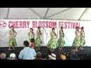 Halau Hula 'a' ala Anuhea (pt. 5) @ 2013 Monterey Park Cherry Blossom Festival