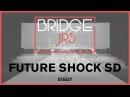 Future Shock SD | Bridge Jr's 2017 (Winter) | STEEZY Official 4K