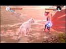 Cats with Naruto special effects!