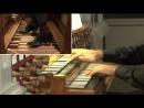 645 J. S. Bach - Wachet auf, ruft uns die Stimme (Schübler Chorales No. 1) - Paolo Tarizzo