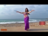 The best new music and dance(Persian Bandary Video Music)