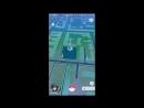 Pokemon GO I Витя Сумрак I покемоны в оренбурге