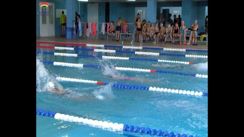 Первенство г.Тосно по плаванию прошло в бассейне Лазурный