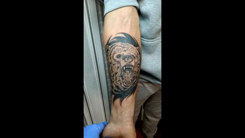 🐻🔥BlackCatTattooArtist tattoo_lviv tattoo тату_львів  татуювання львів art татульвів tattooartist татуировка @ Lviv, U