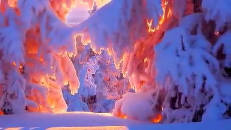 Белый снег-( Ядвига Поплавская и Александр Тихонович)