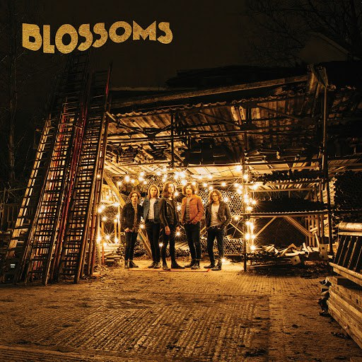 Blossoms album Honey Sweet