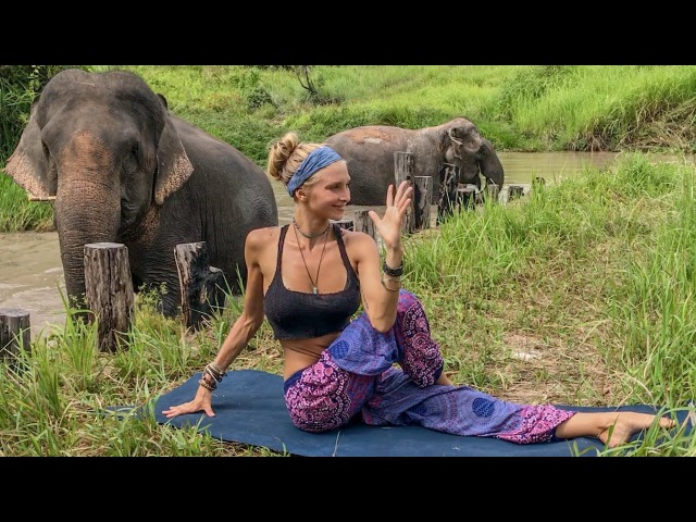 Vinyasa Power Flow Class ♥ 20 Minute Yoga | Cambodia Wildlife Sanctuary
